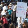 Demonizing the NRA