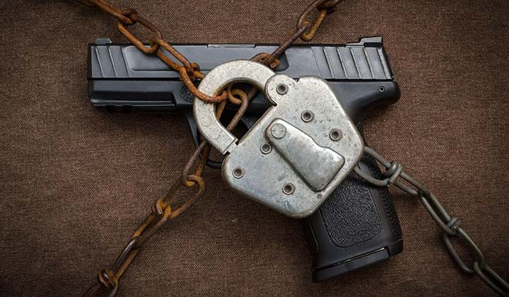 Gun Control Delzara