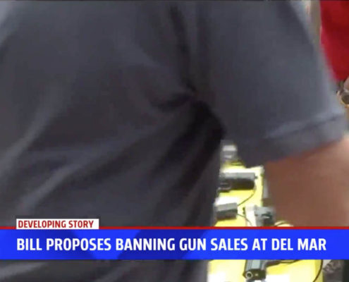 State legislators unveil bill regulating gun shows at Del Mar Fairgrounds