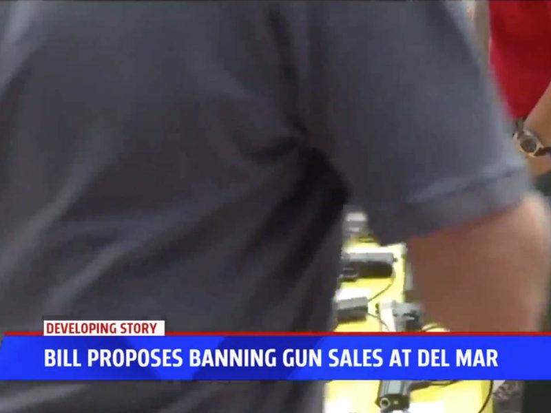 State legislators unveil bill regulating gun shows at Del Mar Fairgrounds