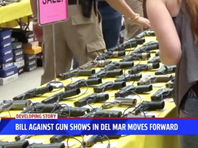 Bill Against Gun Show