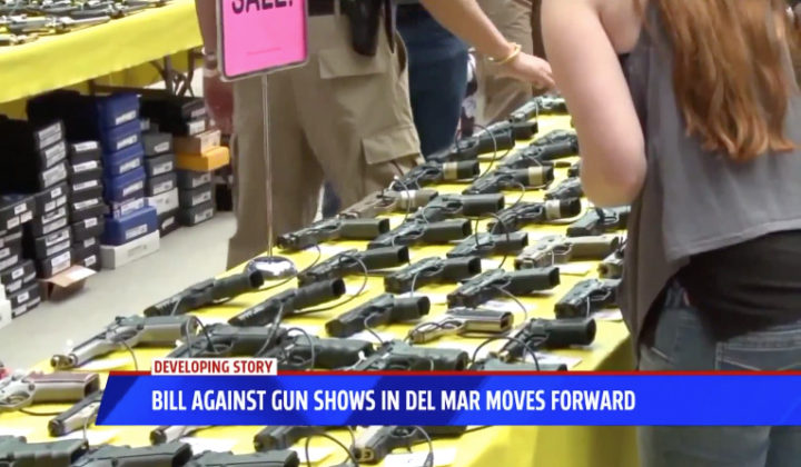 Bill Against Gun Show