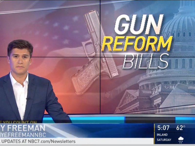 House Passes Two Major Gun Reform Bills