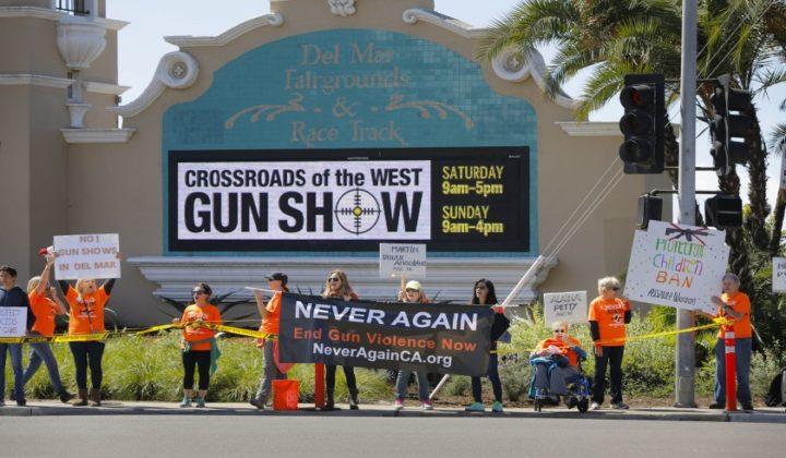Del Mar Gun Show Protest
