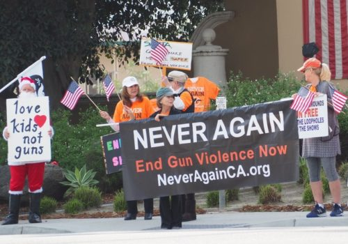 Encinitas Advocate: Gun show protesters, supporters gather at Del Mar Fairgrounds
