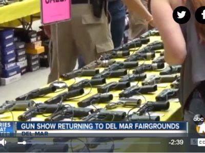 10 News Gun Show