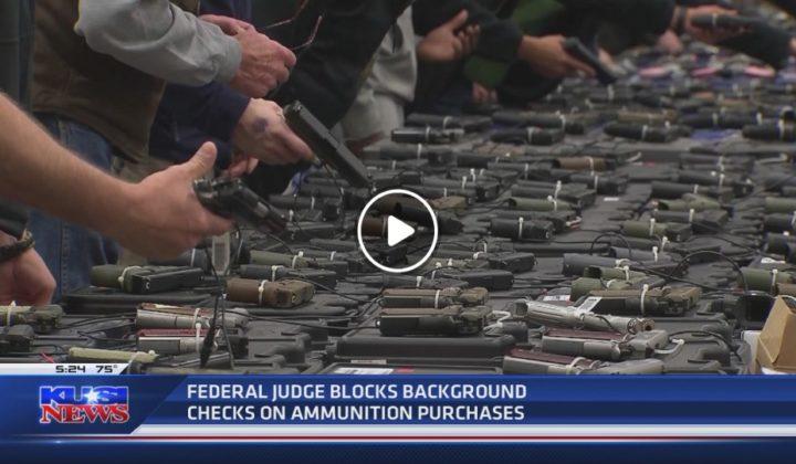 Blocks background checks